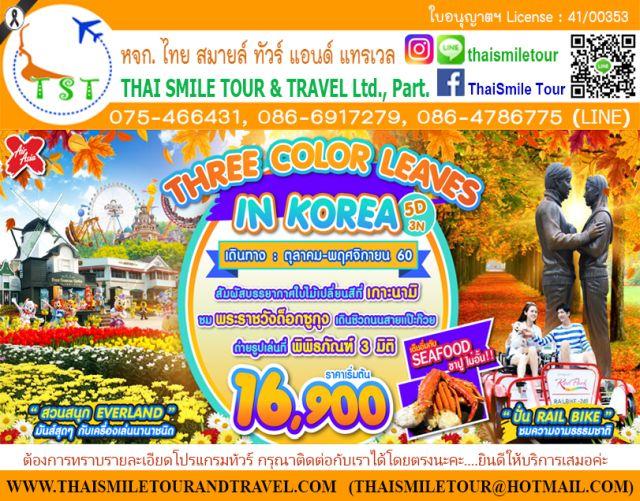 ทัวร์เกาหลี เริ่มต้น 16,900 บาท