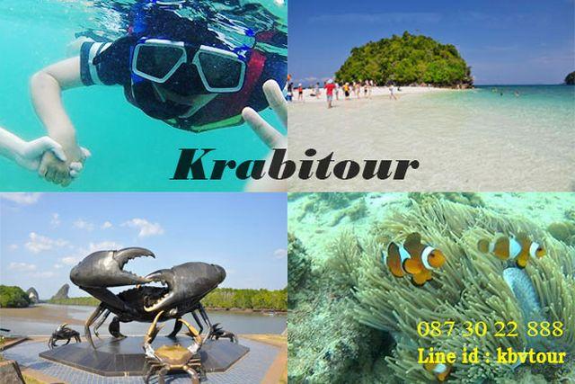 ทัวร์กระบี่ ทัวร์หมู่เกาะสิมิลัน one day trip กระบี่