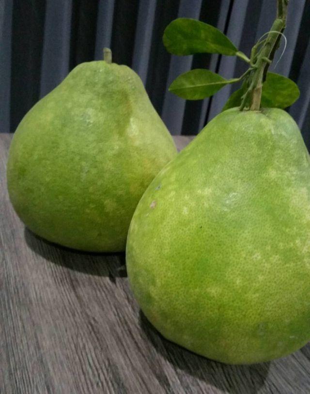 ผลส้มโอทับทิมสยาม จากลุ่มน้ำปากพนัง