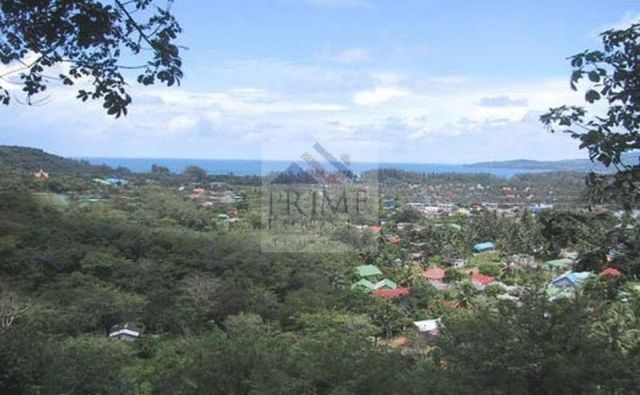 Discounted Land for Sale in Bang Tao Beach Choeng Thale, Thalang