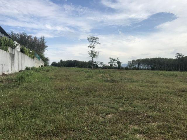 ขายที่ดินถลางในซ.ป่าสัก 8 ใกล้โซนลากูน่า เนื้อที่ 4.5 ไร่ ขาย 5 ล้านต่อไร่