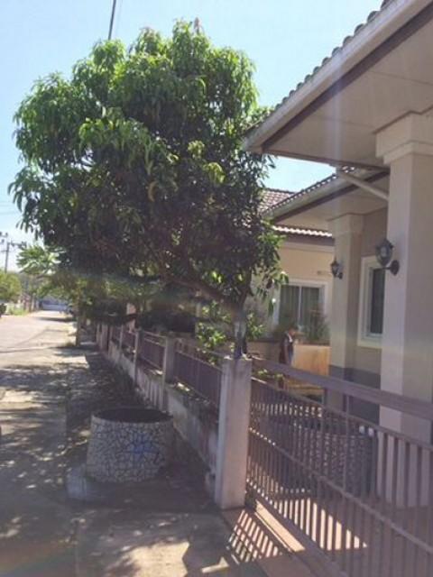 TL-0040 -บ้านเดี่ยวชั้นเดียวให้เช่า มี 2 ห้องนอน 2 ห้องน้ำ 1 ห้องครัว