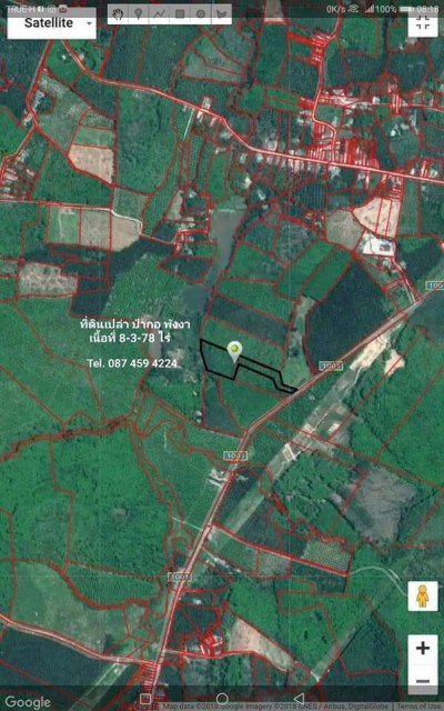 ขายยกแปลง ที่ดินสวนยาง ต.ป่ากอ อ.เมือง พังงา Tel.087 459 4224